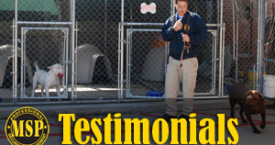 MSP Testimonials